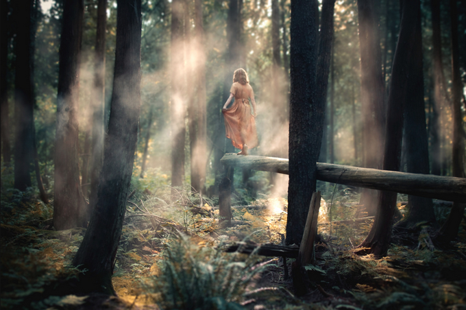 Step Forth by Elizabeth Gadd