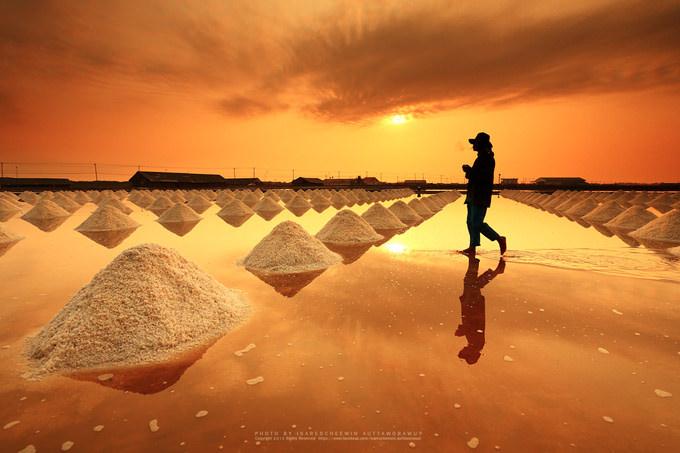 Salt fields, Phetchaburi, Thailand by isarescheewin