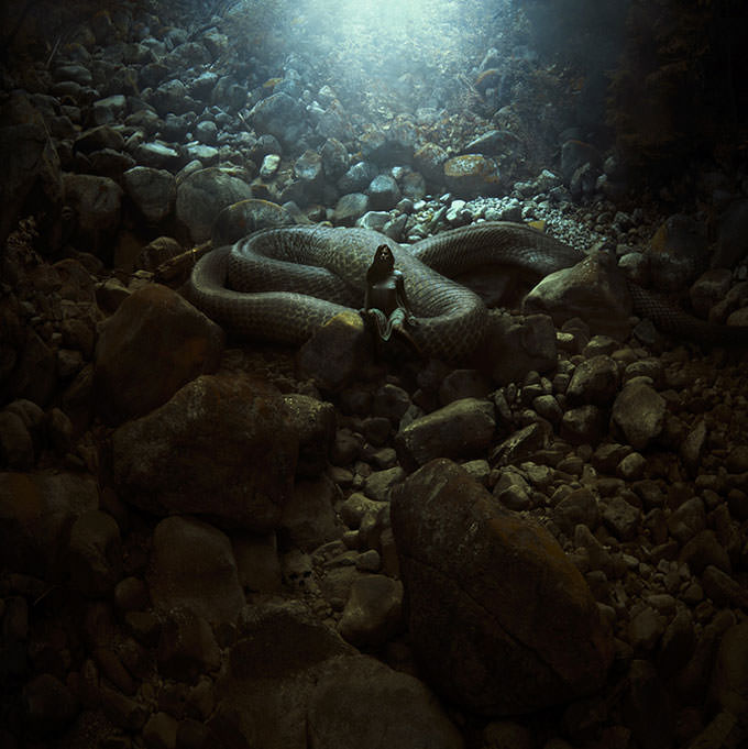 The Serpent's Lair by Karezoid Michal Karcz
