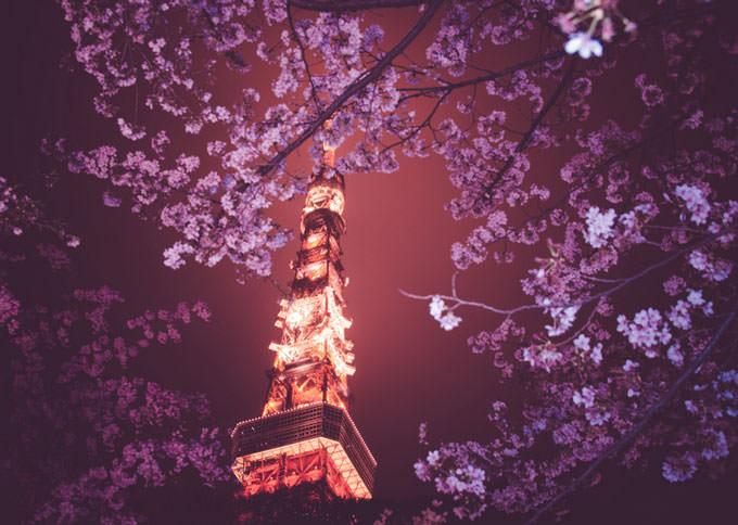 Tokyo Tower by Masashi wakui
