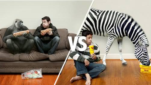 Check out Phlearn's Epic Photo Battle 1