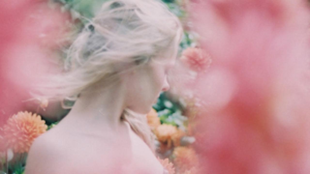 Phlearn's Photo Battle: Lost in a Field of Beauty