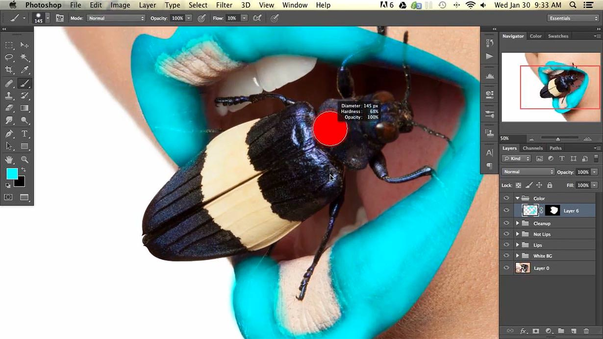 Although the beetle was already an amazing color, we decided to enhance it along with the lips to bring out even more interest. You will learn how to take the natural muted colors of an image and really make them pop out in this Photoshop tutorial.