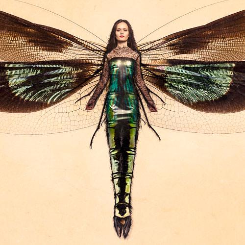 [Image: Insect-Woman-Thumbnail.jpg]