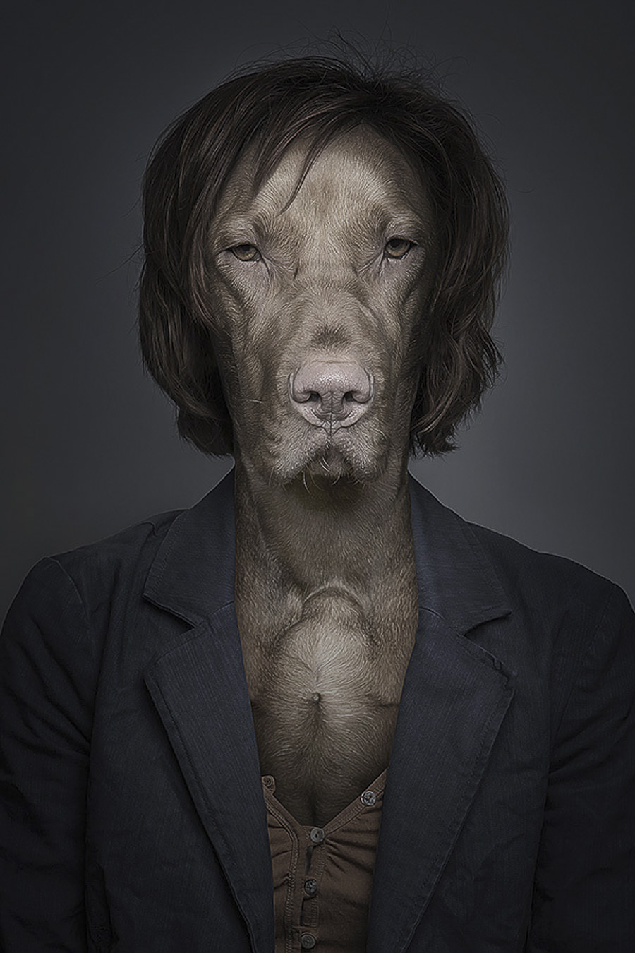 Underdogs by Sebastian Magnani