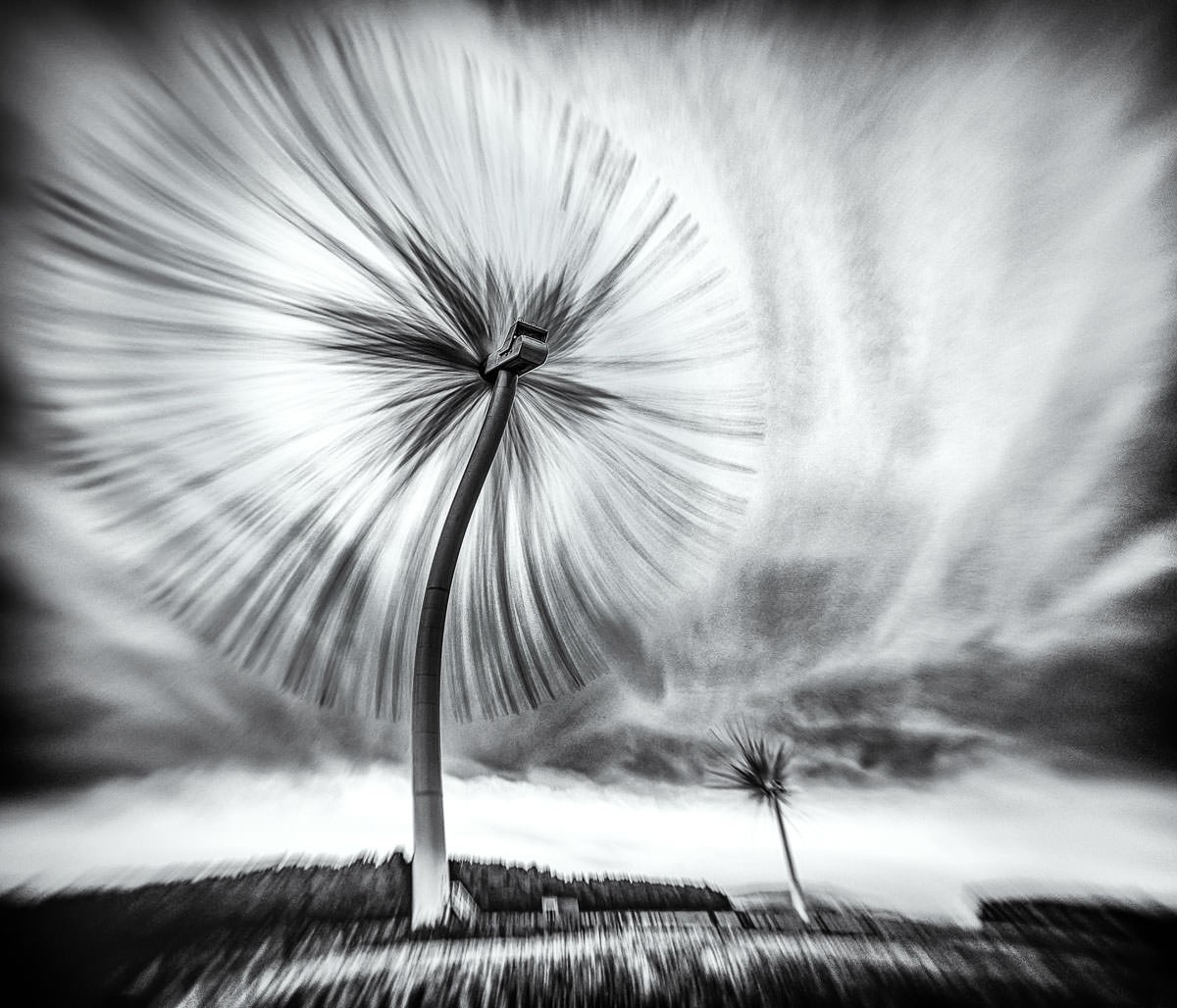 Surreal Image of a Turbo Dandelion Wind Farm