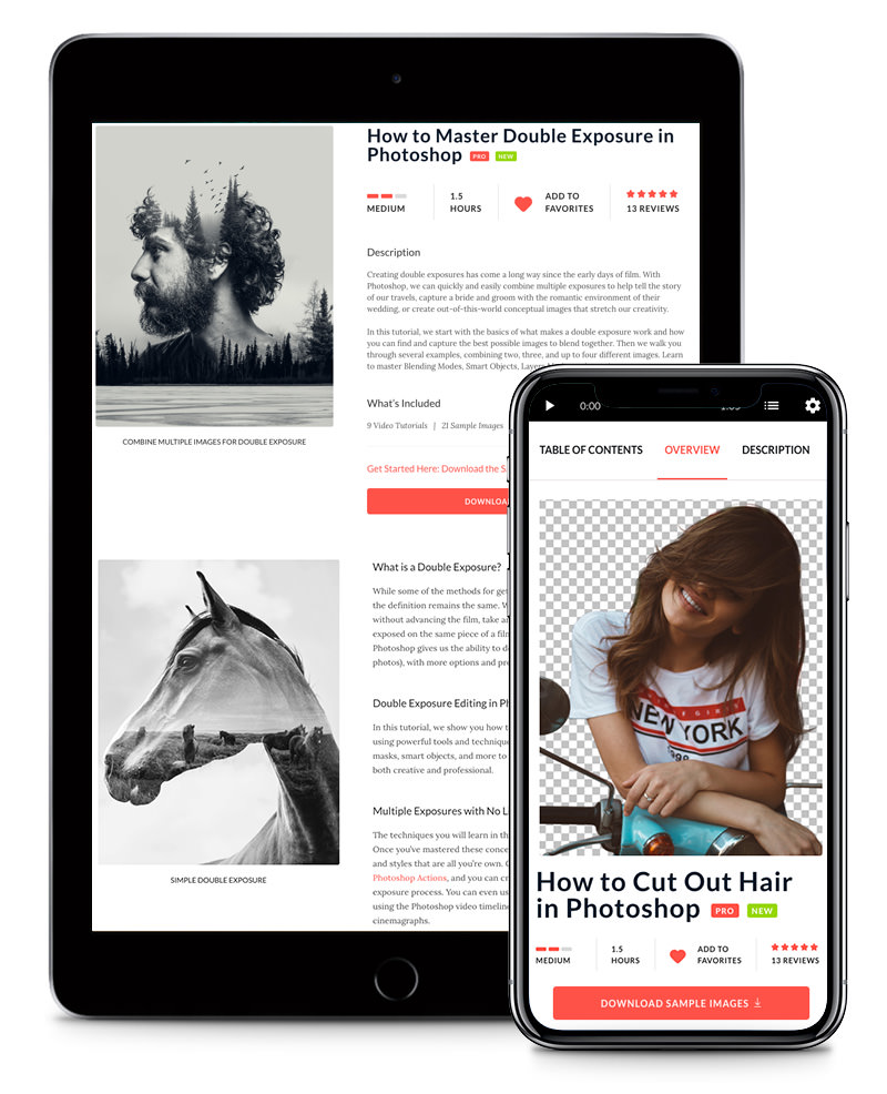 Phlearn Pro is mobile responsive