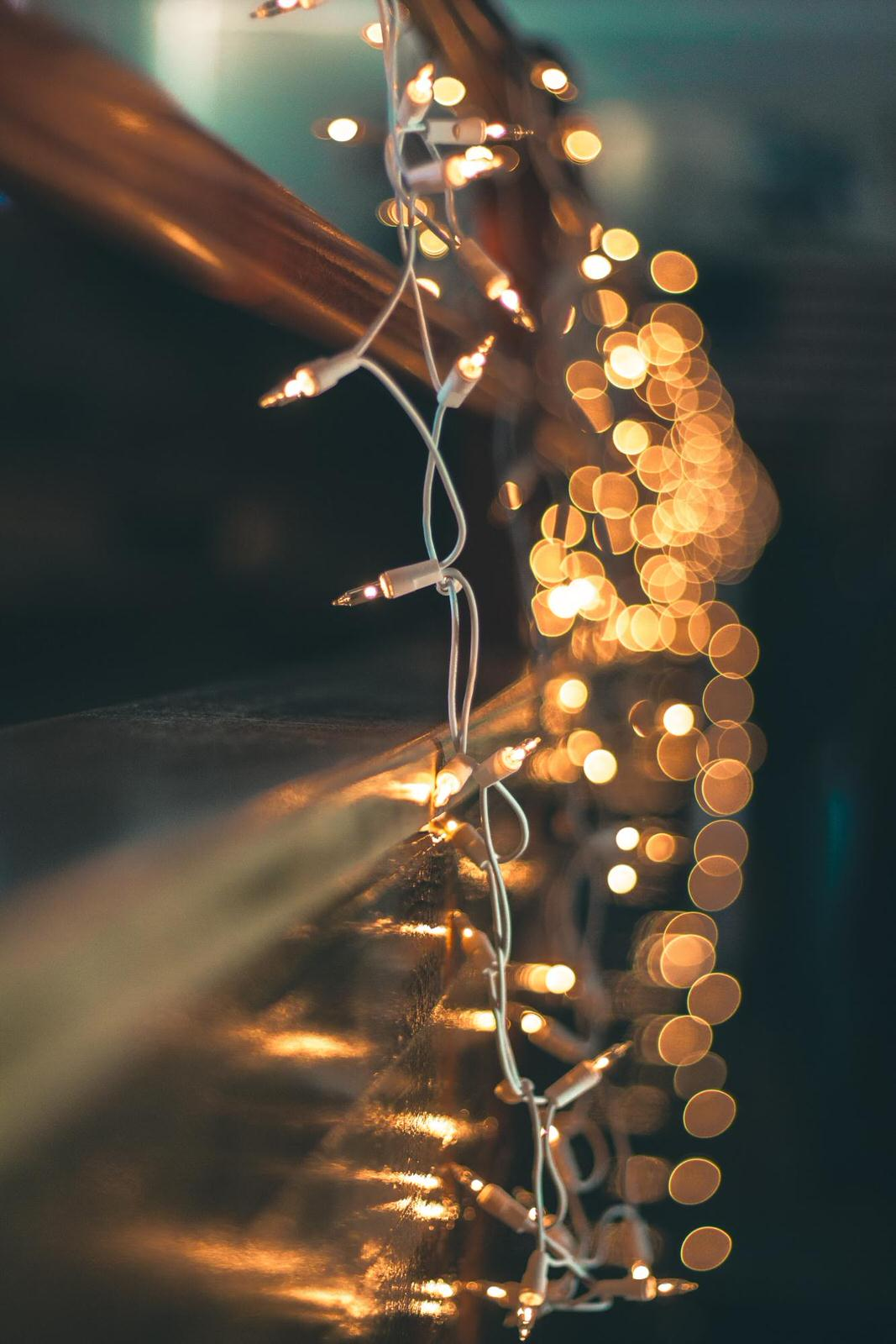 Create Bokeh In Your Photography Video Tutorial Examples