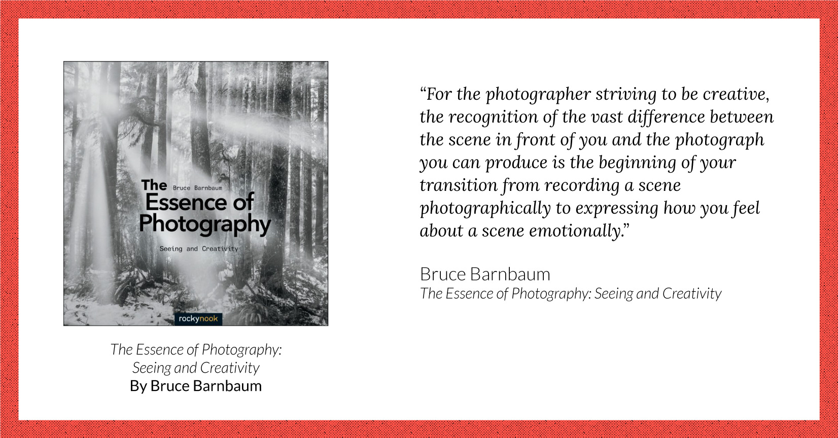 Digital Photography How to Guide Book TWO: For the Artist in you!