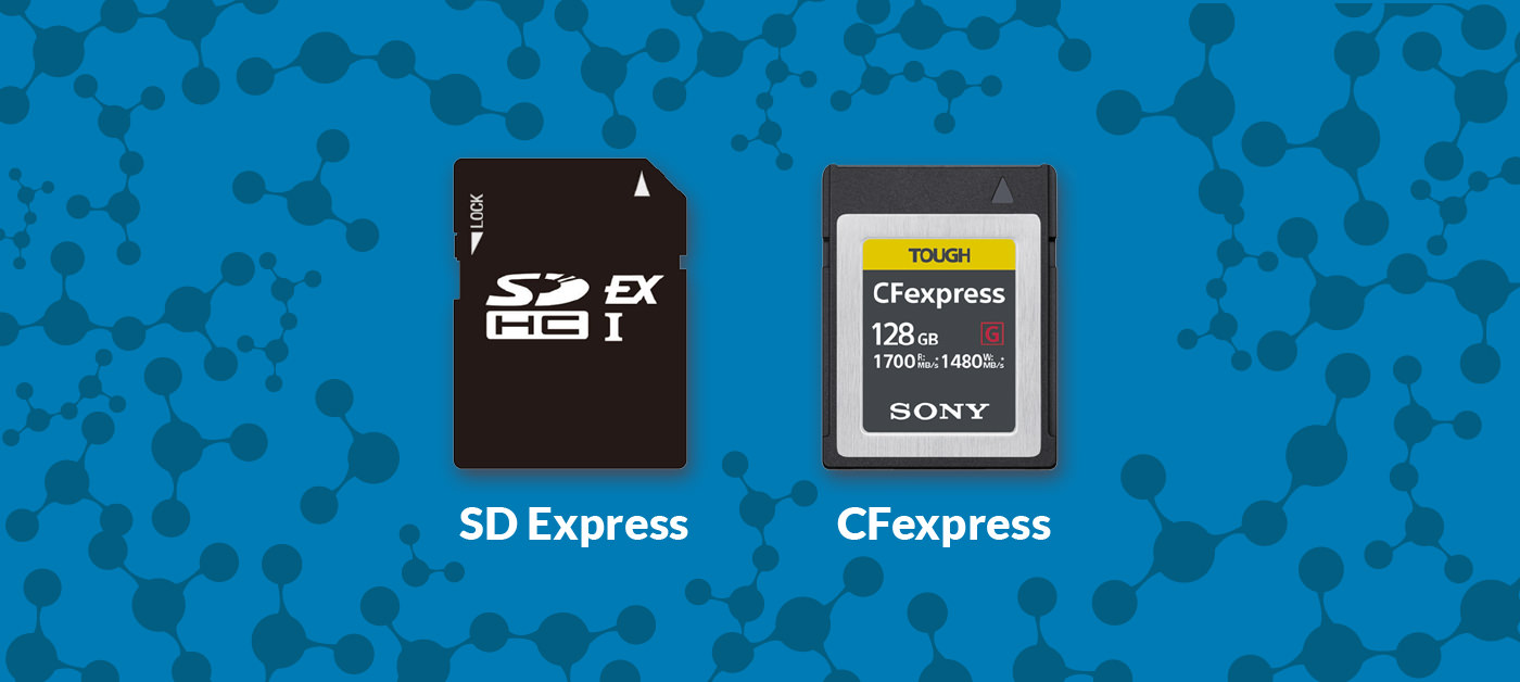 SD Express vs  CFexpress: Which Memory Card Format Do You Need?
