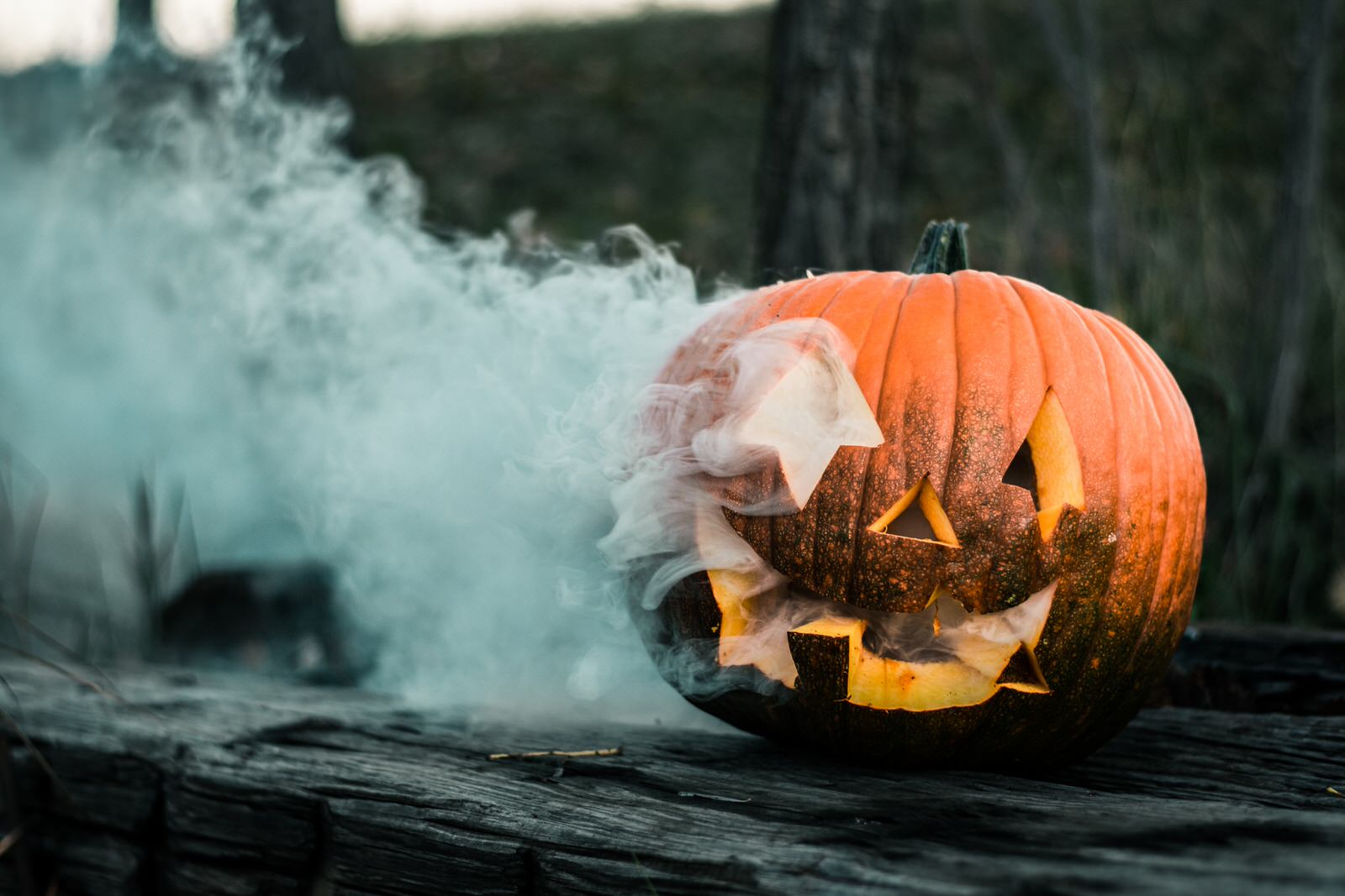 Halloween Photography Guide Image