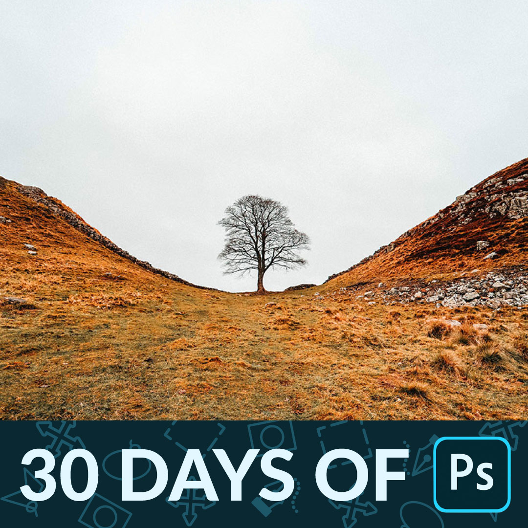 30 days of photoshop tour of photoshop