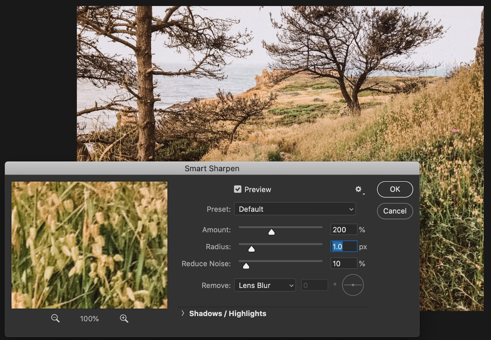 Photoshop CC Smart Sharpen