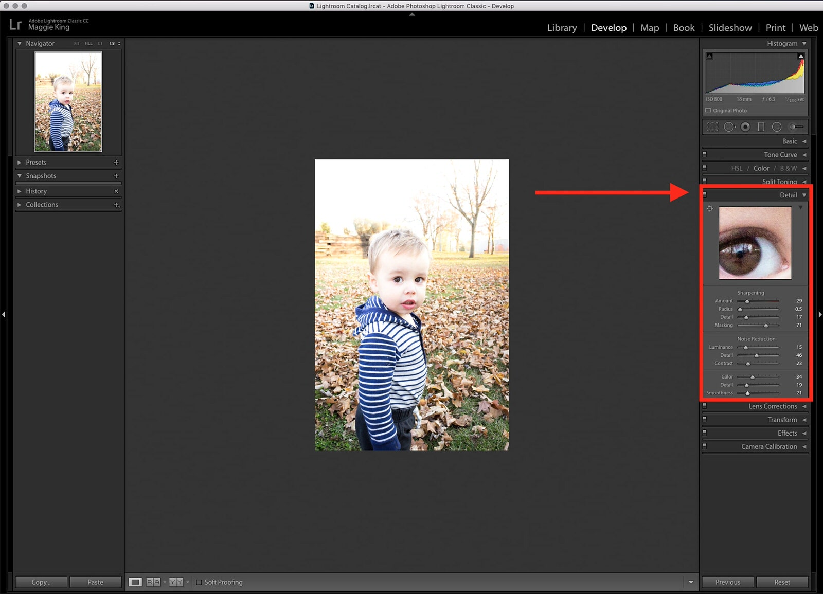 Lightroom Detail Menu Image