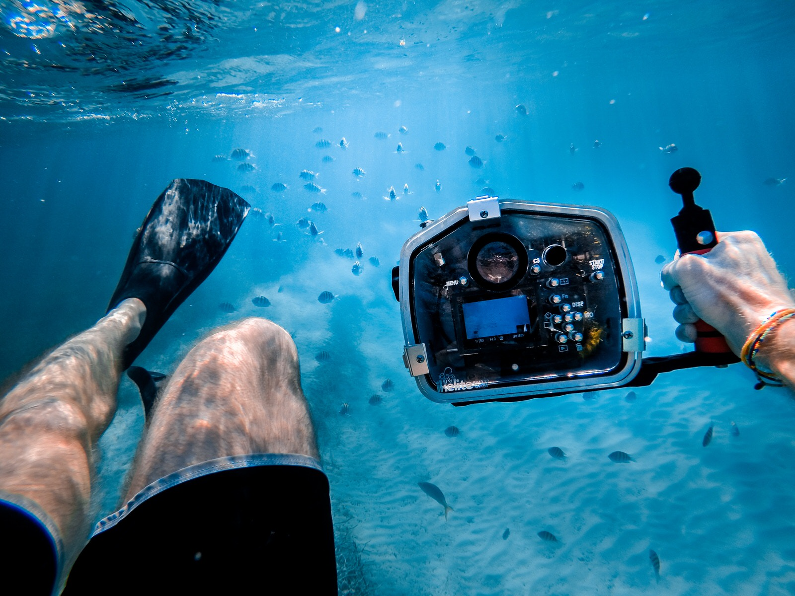 Underwater Photography Gear