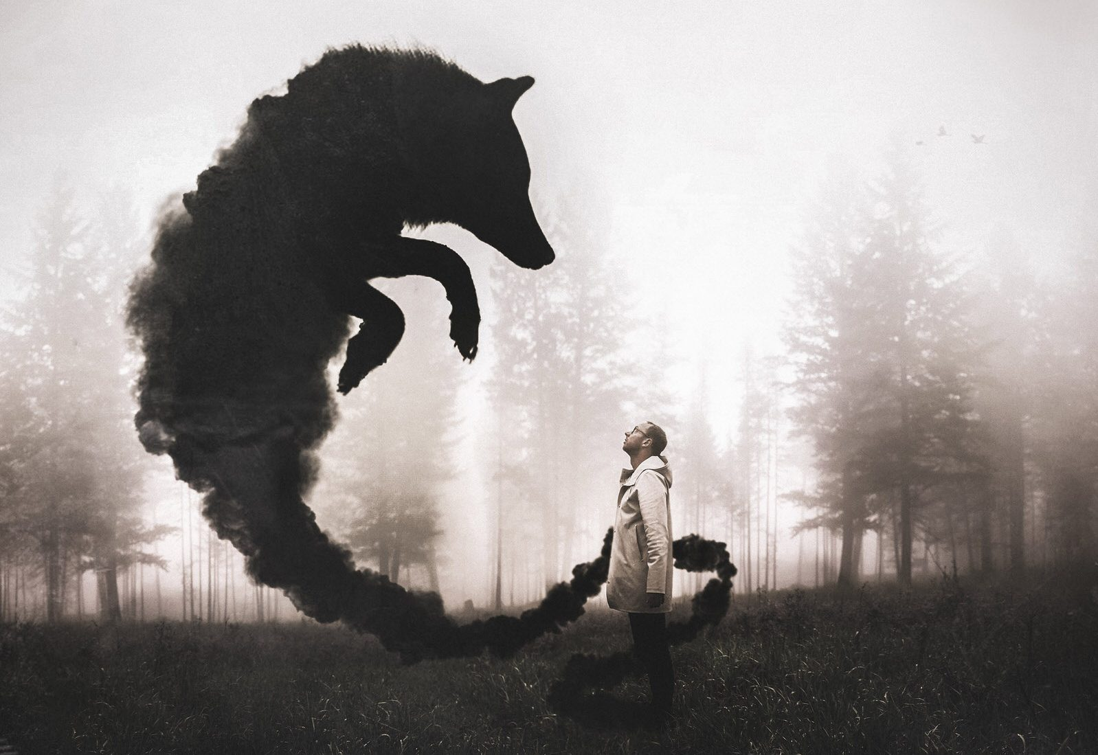Joel Robison The Black Dog