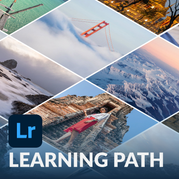 lightroom learning path