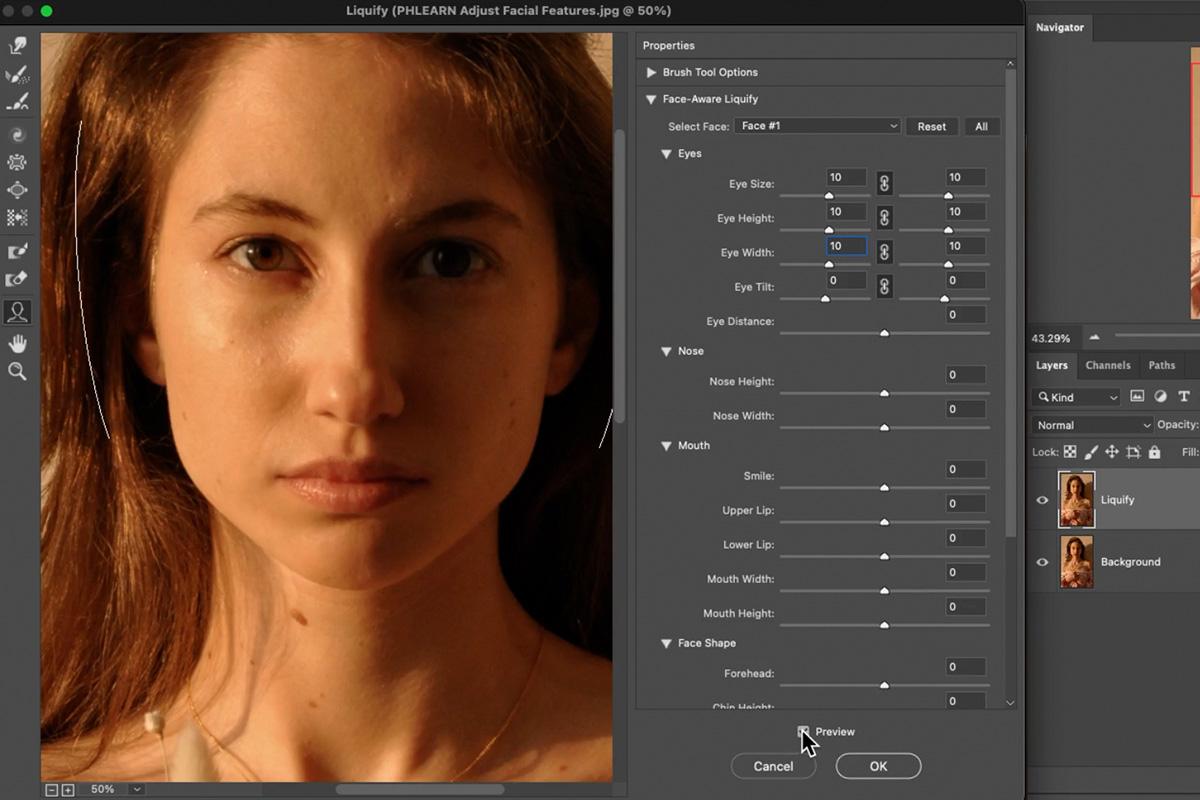 adjust facial features photoshop